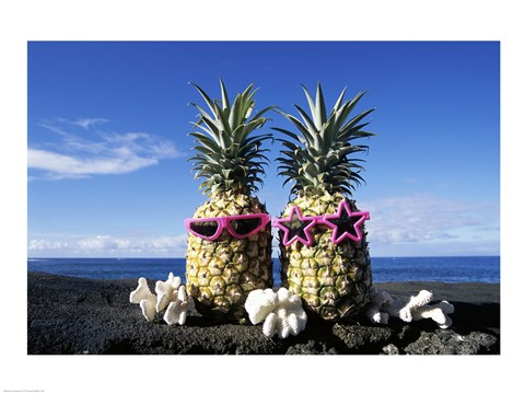 Framed Hawaii USA Pineapples Print