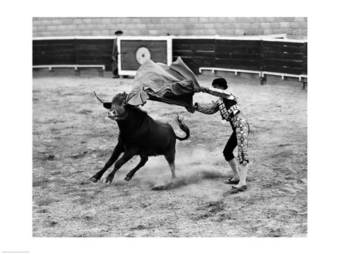 Framed Matador fighting with a bull Print
