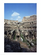 Colosseum Rome Italy  Fine Art Print