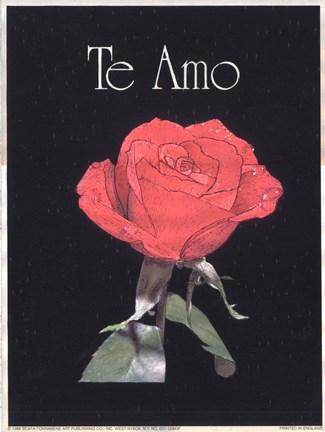I Love You - Spanish Fine Art Print by J. B. Grant at ...