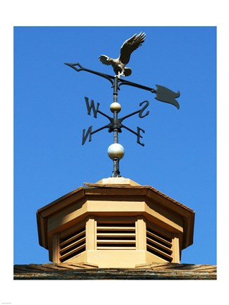 Framed Weathervane Print