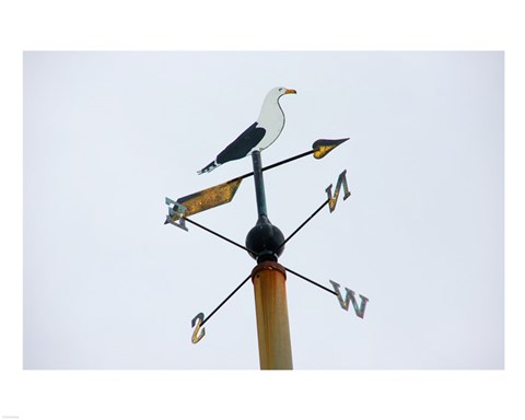 Framed Seagull Weathervane Print