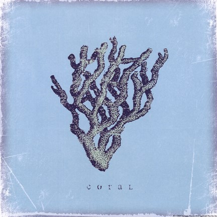 Framed Coral - blue Print
