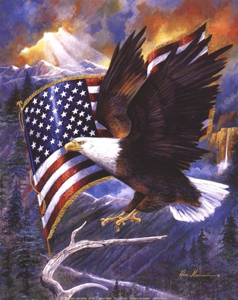 America S Pride Fine Art Print By Ruane Manning At