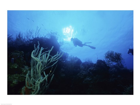 Framed Low angle view of a scuba diver swimming underwater, Belize Print