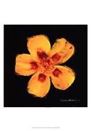 Vibrant Flower X Art