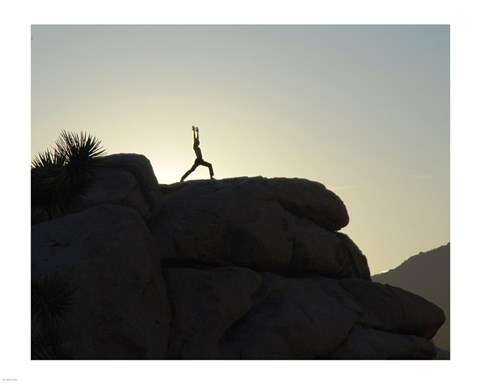 Framed Joshua Tree - Yoga Warrior Print