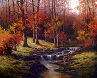 Bubbling Brook  Fine Art Print