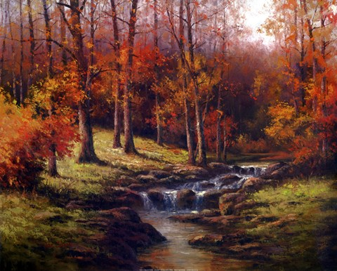 Bubbling Brook Fine Art Print By T C Chiu At