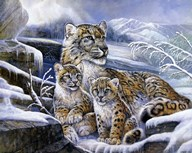 Snow Leopards Art