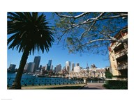 Buildings on the waterfront, Sydney, New South Wales, Australia Art