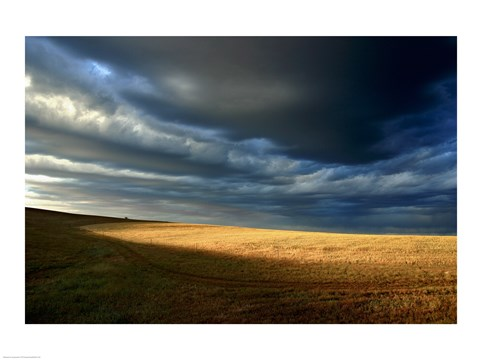 Framed Storm clouds over a landscape, Eyre Peninsula, Australia Print