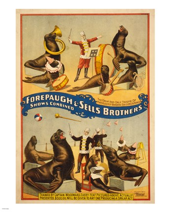 Framed Sells Brothers Sea Lion Circus Print