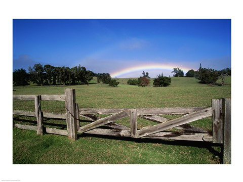 Framed Wooden fence enclosing a field with a rainbow in the background, Maui, Hawaii, USA Print