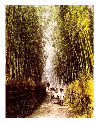 Framed Bamboo Path Print