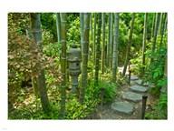 Hasedera-Bamboo Grove Art