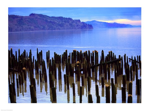 Framed Wooden posts in water, Columbia River, Washington, USA Print
