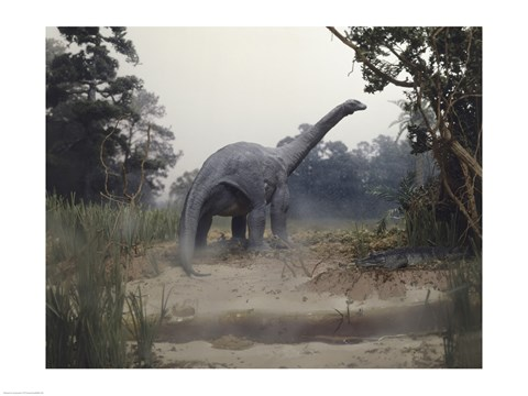 Framed Rear view of an alamosaurus walking in a forest Print