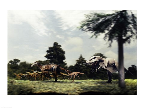 Framed Side profile of a tyrannosaur attacking a group of anatosaurus Print