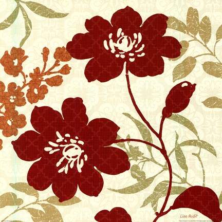 Framed Floral Shadows II Print