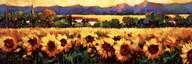Sweeping Fields of Sunflowers  Fine Art Print