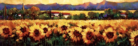 Framed Sweeping Fields of Sunflowers Print