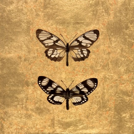 Framed Pair of Butterflies on Gold Print