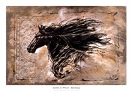Black Beauty  Fine Art Print