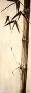 Sepia Guadua Bamboo II  Fine Art Print