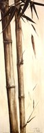 Sepia Guadua Bamboo I  Fine Art Print