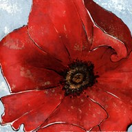 Exotic Poppy I Art