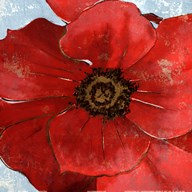 Exotic Poppy II  Fine Art Print