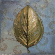 Swift Leaf I  Fine Art Print