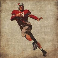 Vintage Sports IV  Fine Art Print