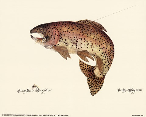 Framed Brown Trout Print