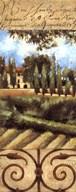 Villa In Tuscany  Fine Art Print