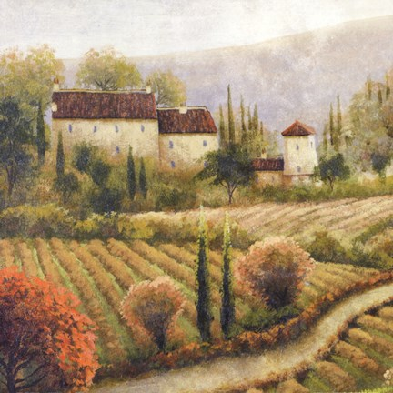 Framed Tuscany Vineyard I Print