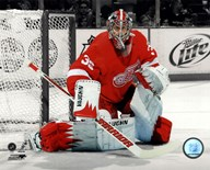 Jimmy Howard 2011-12 Spotlight Action Art