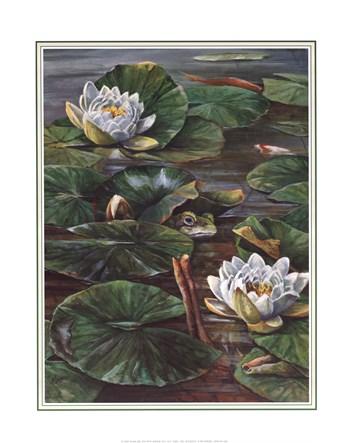 Les FLEURS  dans  L'ART - Page 12 Pat-durgin-frog-in-lily-pond-size-16x20