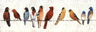 The Usual Suspects - Birds on a Wire Art