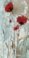 Splash Poppies II