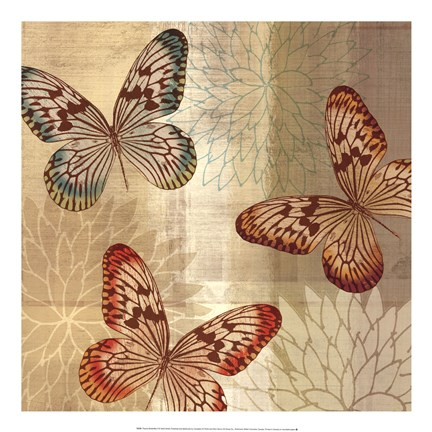 Framed Tropical Butterflies II Print