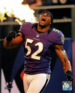 Ray Lewis 2012 Action  Fine Art Print