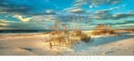 Beach Dream II  Fine Art Print