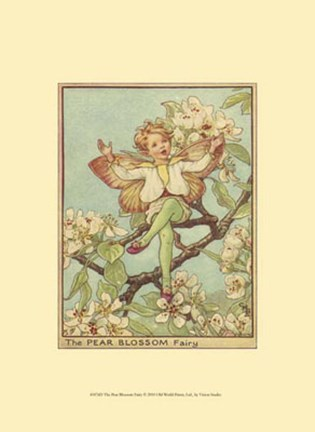 Framed Pear Blossom Fairy Print
