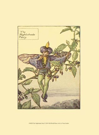 Framed Nightshade Fairy Print