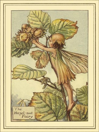 Framed Hazelnut Fairy Print