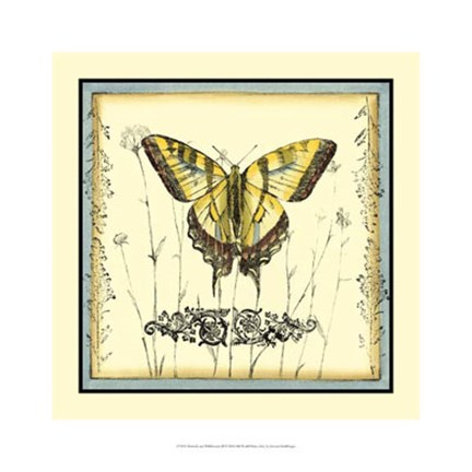 Framed Butterfly and Wildflowers III Print
