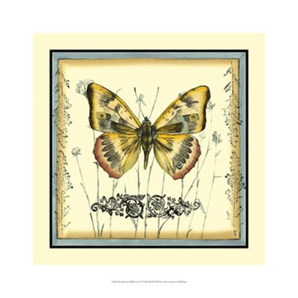 Framed Butterfly and Wildflowers IV Print