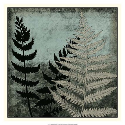 Framed Illuminated Ferns V Print